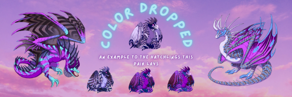 Color_Dropped.png